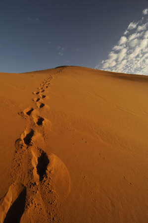 lonely footprints of one person in desert sand dune with blue sky photo