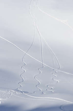 multiple winding ski tracks on fresh powder snow photo