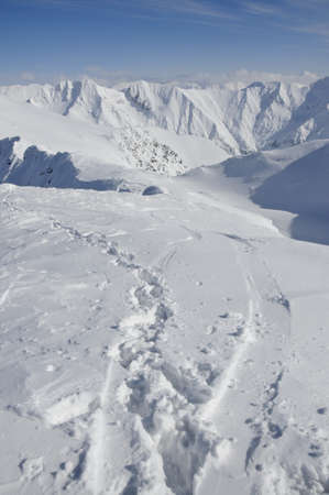 footprints and ski and snowboard tracks in alpine winter landscape photo
