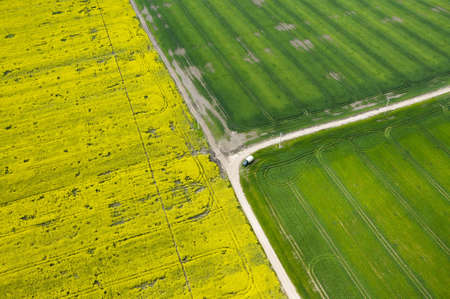 rapa: aerial view of drought affected rapeseed (brassica napus) and green crops fields Stock Photo