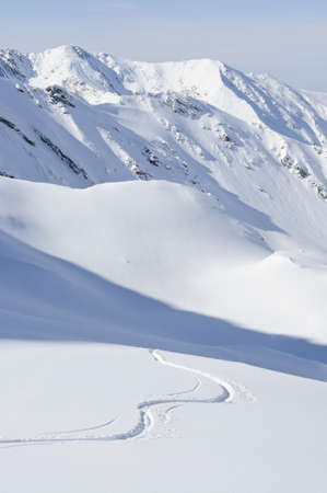 snow capped: winding single ski track on fresh powder snow  Stock Photo