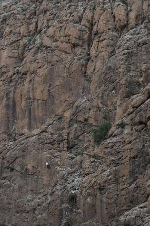 rappeling: single person rockclimbing impressive mountain rock wall Stock Photo
