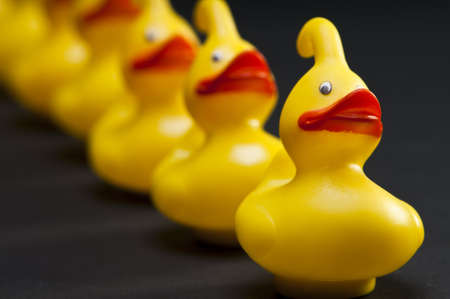row of yellow rubber ducks with shallow depth of field Standard-Bild