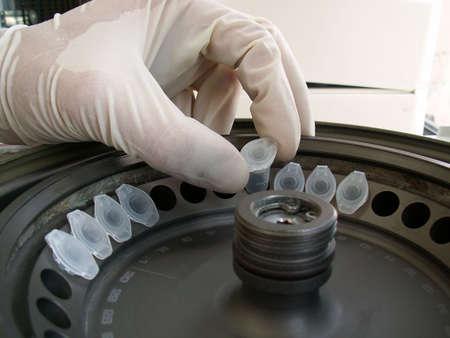 centrifuge: doctor placing test tubes in centrifuge