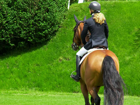 horse blonde: Woman jockey riding a thoroughbred horse