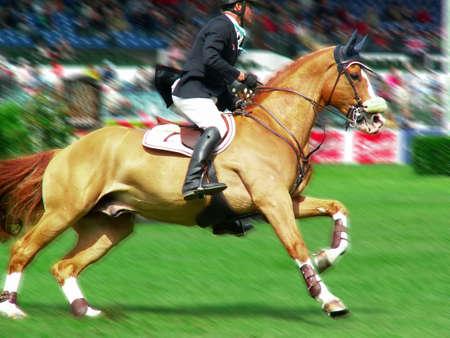 Jockey riding a fast thoroughbred horse