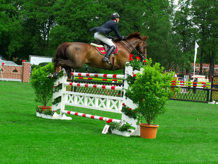 Jockey and horse jumping over obstacle at a derby contest Standard-Bild