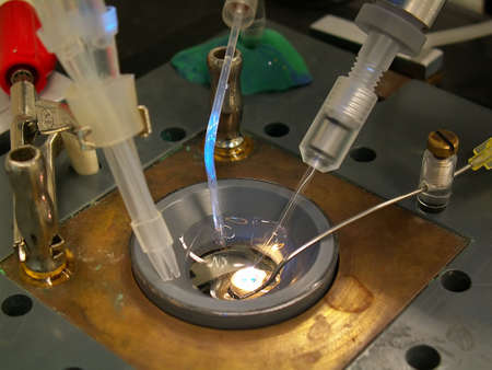 grounding: an electro-physiology instrument for patch clamp technique used in medical laboratories