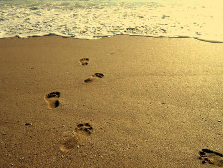 Footsteps in the sand on a beach at sunrise photo
