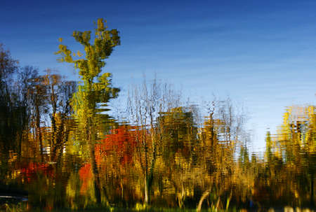 Water reflection of colorful autumn trees  photo