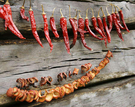 doğal olarak: Red hot chilies and mushrooms naturally drying