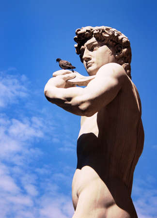 The famous David sculpture by Michelangelo and a pigeon, in Florence, Italy Stock Photo