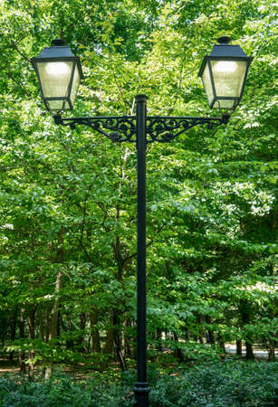 Vintage lamp post with two globes in a park. Street light pole with green trees in the background.