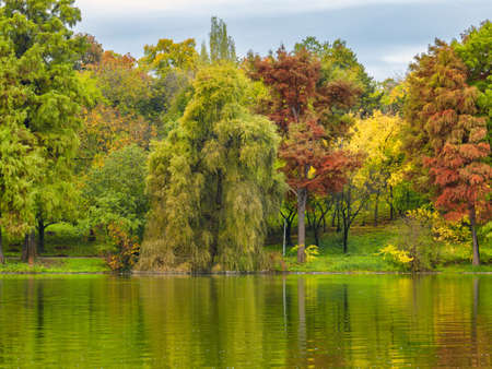 Nature landscape with colorful trees and the sky reflecting in the water of a lake. Autumn landscape.