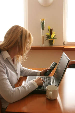 woman working at the computer at home