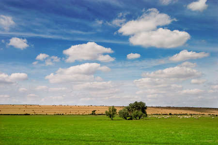 French landscape in Summer season Stock Photo