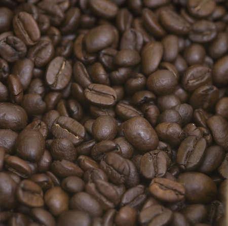 coffee grain toasted Stock Photo