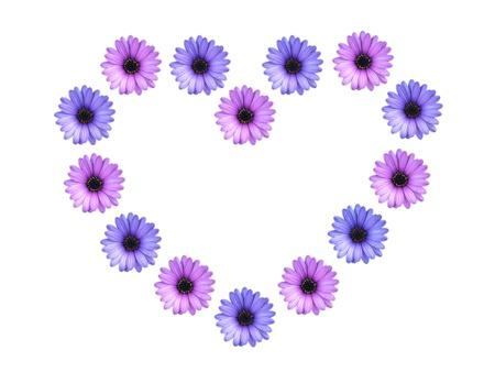 heart flowers                               Stock Photo