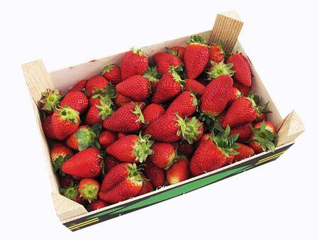 strawberries box Stock Photo - 13139866