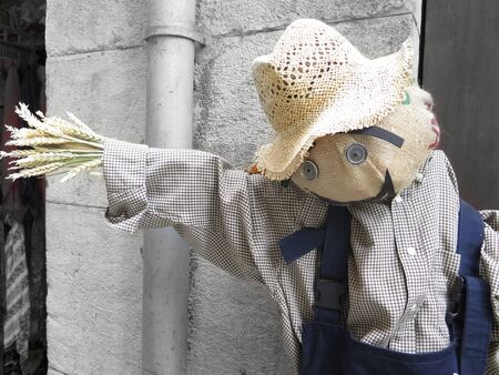 Scarecrow with cap and shirt