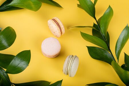 Macaroons isolated on yellow background, floral and green leaves concept, summer or spring celebrations like Valentine's Day, Woman's Day, Mother's Day, March and Easter festive holidays