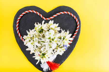 Spring time flowers like snowdrops, hyacinth and roses, isolated on yellow simple background, spring symbol and traditional romanian festive on 1st of march Stock Photo