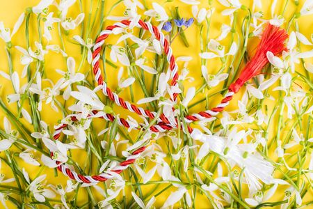 Spring time flowers like snowdrops, isolated on colorful simple flay lay background, spring symbol and traditional romanian, festive on 1st of march