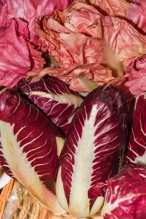 Red radicchio pink endives vegetables raw whole purple pink color on display in famous Borough Market in London