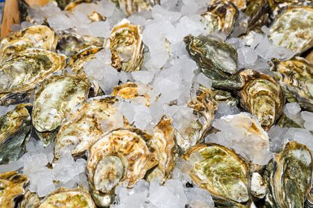Oyster is the common name for a number of different families of salt-water bivalve molluscs that live in marine or brackish habitats. In some species, the valves are highly calcified