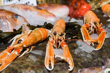 Nephrops norvegicus, known variously as the Norway lobster, Dublin Bay prawn, langoustine or scampi, a slim, orange-pink lobster. Fresh Food Buffet Brunch Catering Dining Eating Party Sharing Concept Stock Photo