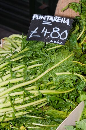 Greens for sale. Local produce for sale displayed at the market. Borough farmer's market in London. Organic and bio fresh healthy eating concept. Veggies, vegetables, herbs and spices, price tags