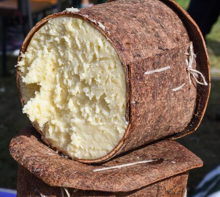Branza de burduf, traditional sheep's milk cheese from south of Transilvania, Romanian specialty cheese, yellow round shape goat cheese balls homemade, tree bark covering, colored napkin Stock Photo