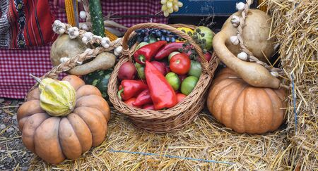 Autumn harvesting agriculture scenery with pumpkins, red peppers, autumn vegetables, bale of hay corner concept decorated for seasonal food market