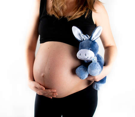 Pregnant woman holding blue donkey toy for baby boy. Tummy belly closeup and pregnancy concept. Young slim skinny model posing standing on white background Standard-Bild
