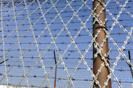 barbed wire frame: Barbed wire fencing a prison in a sunny day