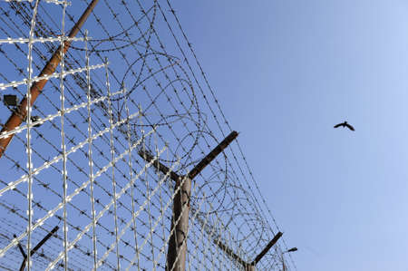 Barbed wire fencing a prison in a sunny day