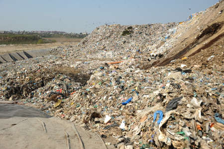 disposal: Disposal of waste materials in a garbage dump