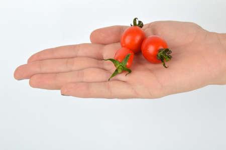 tomate cherry: cereza espera de tomate en la mano