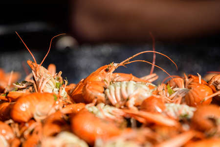 Close up of freshly cooked European crayfishes Astacus astacus with spices displayed for sale at a street food festival, ready to eat seafood photographed with soft focus