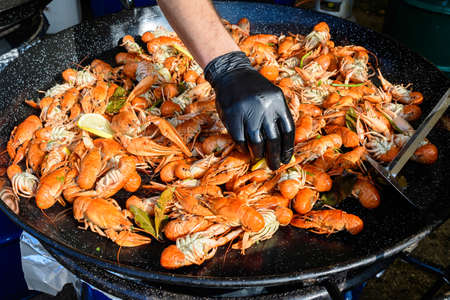 Hand of a man preparing and cooking European crayfishes Astacus astacus with spices displayed for sale at a street food festival, ready to eat seafood 스톡 콘텐츠