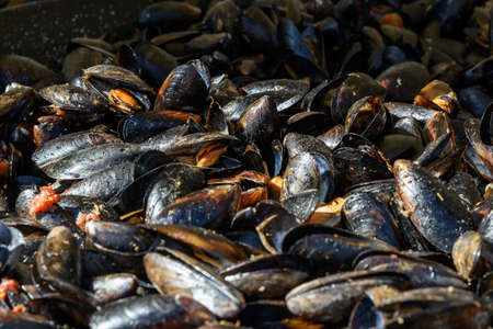 Large group of cooked mussels with tomato sauce at a street food festival, ready to eat seafood