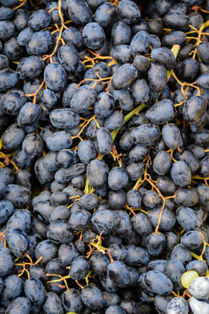 Close up of fresh blue organic grapes in a small wooden box displayed for sale at a street food market
