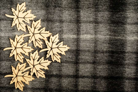 Six light brown wooden leaves on black and grey textured textile wool material background with vertical and horizontal stripes, on left side with space for text, top view with laser cut wooden objects 免版税图像