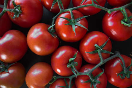 Top view of some perfect red tomatoes for backgrounds Stockfoto