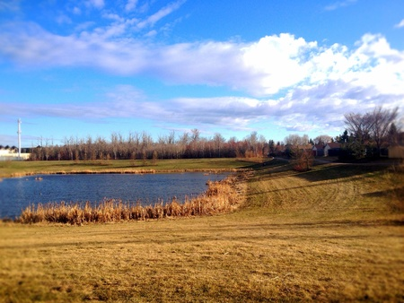frisse start: de zeer frisse start van de lente in Alberta Canada. Stockfoto