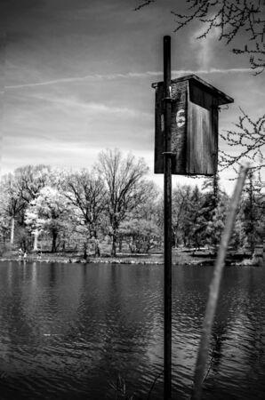 maison oiseau: Maison d'oiseau au bord du lac