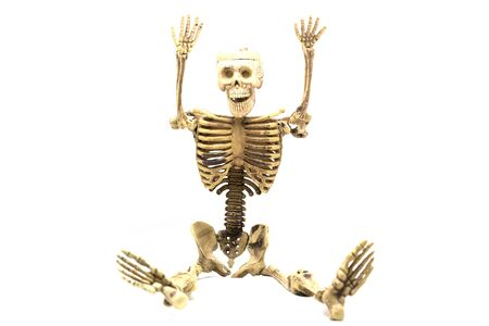 visual therapy: human skeleton isolated on white background cutout