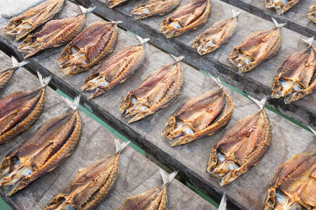 urge: Tropical fish drying in the sun Banda Islands Maluku Indonesia