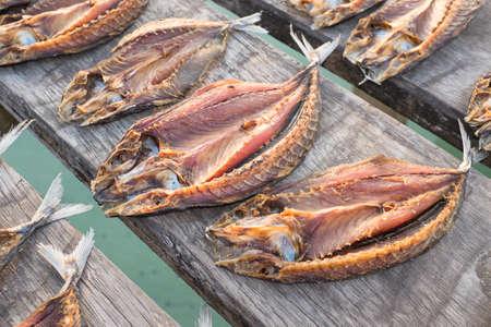 Tropische Fische Trocknen in der Sonne Standard-Bild