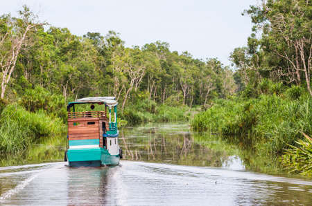 Traditional Klotok sailing on a river in Tanjung Puting National Park, Kalimantan, Indonesia. Standard-Bild